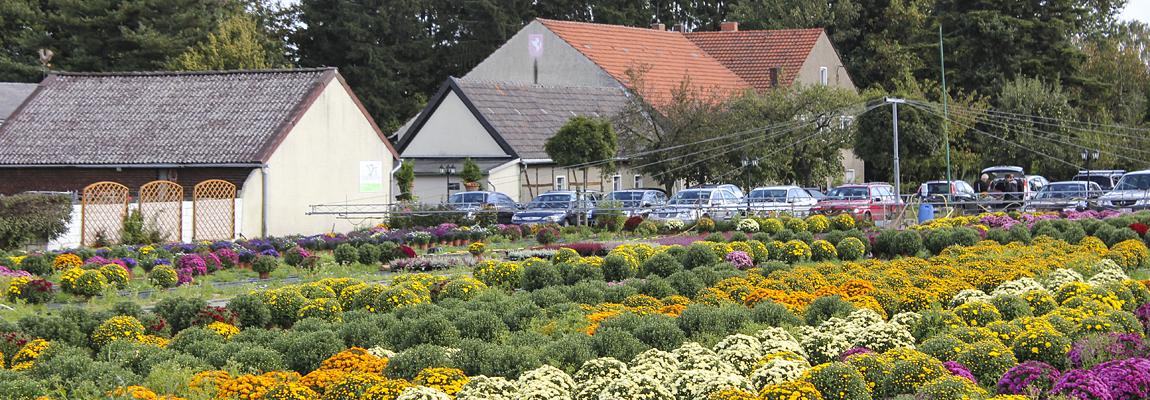 Gartenbau Deifuß Kamen
